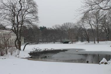 A man was found dead in Prospect Park on Monday.
