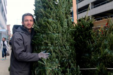 Harold DeLucia who, along with his brother Louis, runs NYC Trees which sells sustainable Christmas trees both online and at stands in Astoria, Long Island City and the Upper East Side.