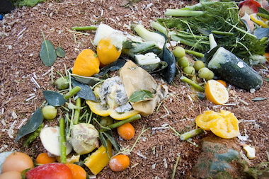 Food scraps can be turned into compost that's used to fertilize gardens. This spring the city will launch a pilot program for curbside collection of food waste in Park Slope, Gowanus and Sunset Park.