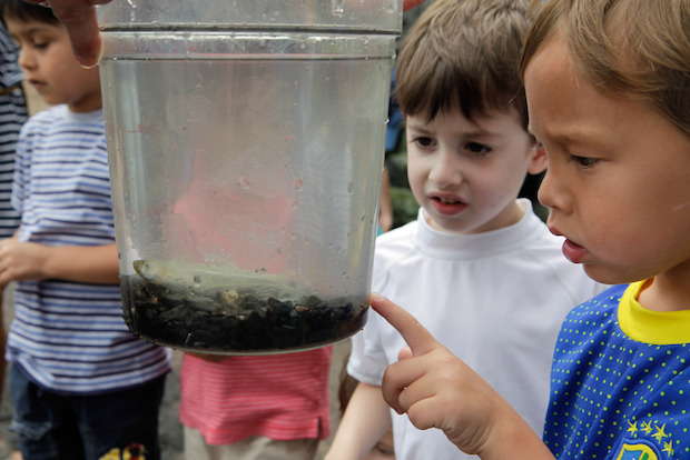 "The Brooklyn Bridge Park Conservancy is planning to build a classroom fitted with an aquarium and a ""touch pool"" filled with East River plants and critters."