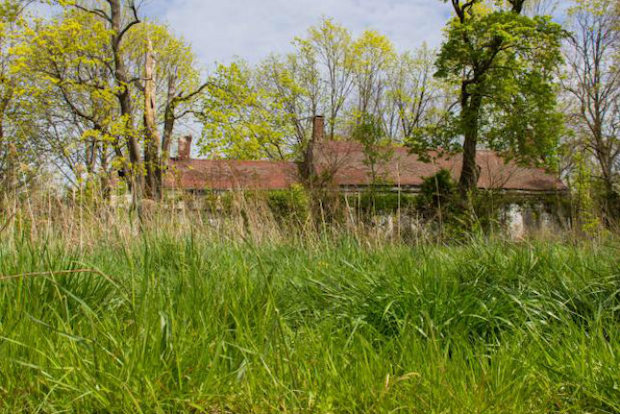 A group of local conservationists has started a petition to ask the city to buy the historic Manee-Seguine Homestead from the owner in order to repair it.