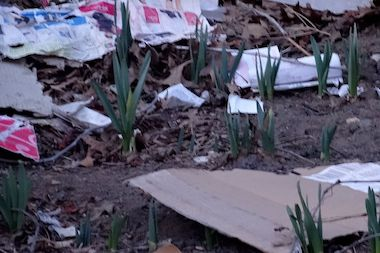 Trash from the store often ends up in a nearby community garden, residents say.
