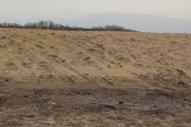 ATV riders damaged the beach berms and plantings on top of Crescent Beach, the Parks Department said.