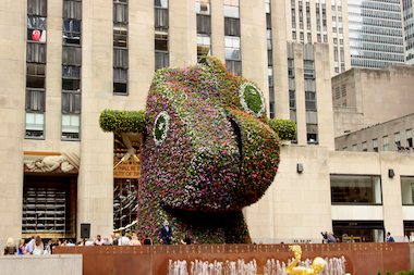 A 37-foot-tall sculpture made of flowering plants will exhibit at Rockefeller Plaza through September.