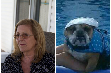 Irene Helale, 69, left, was arrested after prosecutors said she splashed ammonia on her neighbors' English bulldog, Rocky, getting into both of his eyes. The incident left Rocky with ulcers in both eyes and he could potentially lose his sight, court papers said.