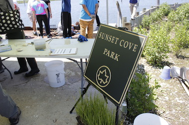 The city was given a grant in 2014 to restore marshland at a Broad Channel park.