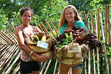 Visitors to the Battery Urban Farm will be able to pick their own harvest this summer.