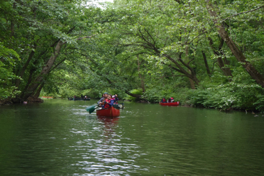 The Bronx River will host a series of research projects on Monday, Aug. 18.