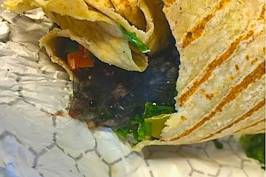 A dead rat was found in a wrap delivered from a Financial District Chop't.