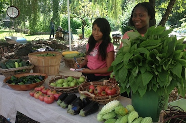 Youth fellows from Project EATS will run the new farm stand at the Brooklyn Museum.