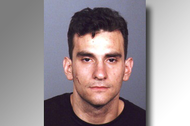 Robert DeCarlo, 26, crashed a stolen minivan into a woman and her two daughters before fleeing on foot, police said.