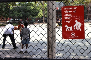 "Leaving your dog's poop on the street is a violation of ""Pooper Scooper"" law and carries a $250 fine."