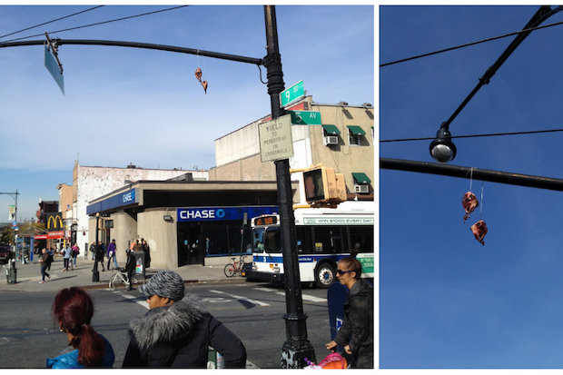 A pair of bloody animal heads was found on a street light at Ninth St. at Fifth Ave.