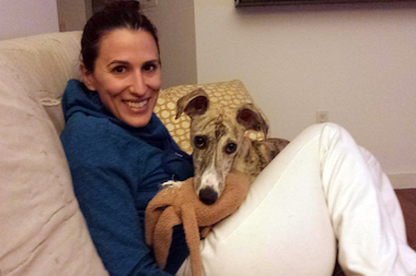 Burt, a Whippet, was reunited Jan. 27, 2015 with his Harlem owner, Lauren Piccolo, after being missing for five months.