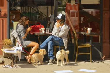 Dogs can now legally dine outdoors at new york restaurants for Dog friendly hotels nyc