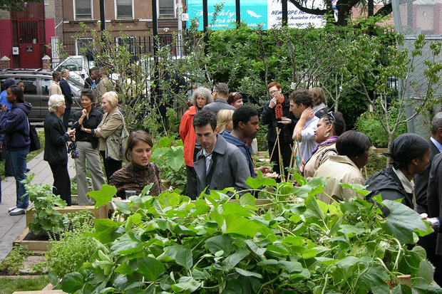 There are more than 30 gardens in the neighborhood where residents can volunteer or become a member.