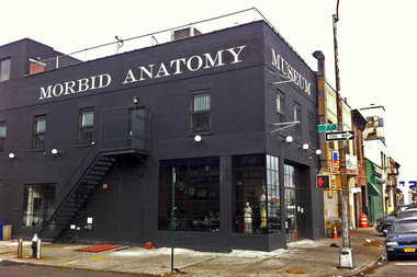 Morbid Anatomy Museum, located at 424 Third Avenue in Gowanus.