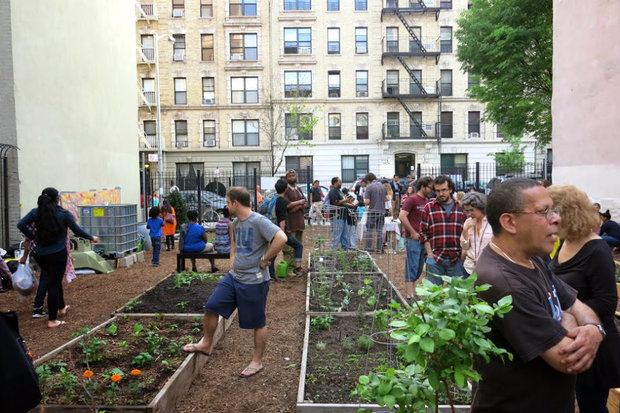 The community garden recently earned the support of their local community board and city council member.