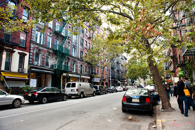 Volunteers will help count and map NYC's street trees.