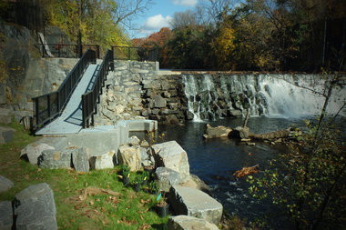 The newly installed fish ladder in the Bronx River at the 182nd Street dam should help herring spawn in the waterway for the first time since the 1600s, according to the BRA.