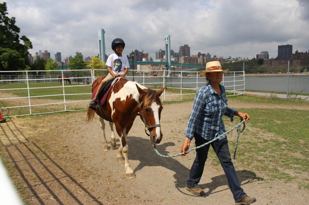 Manhattan's only horse riding facility may close because the Parks Department want to use their space to build a playground.