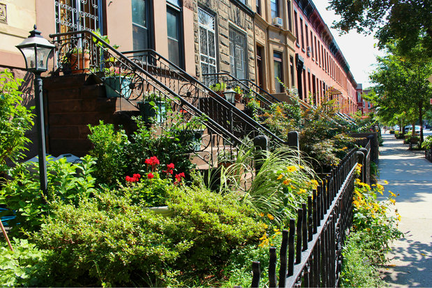 Bainbridge Street between Stuyvesant Avenue and Malcolm X Boulevard beat out nearly 200 blocks in the borough, officials said.