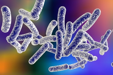 One person has died and 13 have been infected with Legionnaires' disease in Morris Park, the Health Department said.