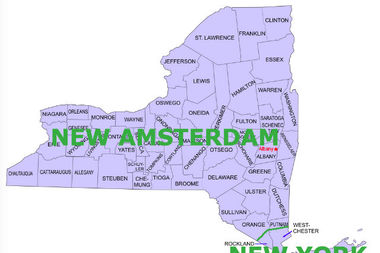 Pro-secessionists want to divide New York into an upstate region and a downstate one.