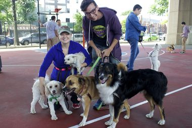 Astoria residents Pamela Shandrow and Michael McKinstry with dogs Sweet Pea, Puddle, Persy and Eros, at the site of the future dog run.