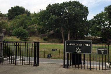 A teenager attacked a 39-year-old man in the park at 3:45 a.m. on August 26, police said.