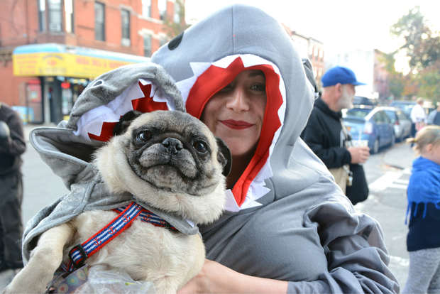 To commemorate the anniversary of Hurricane Sandy, Red Hook residents will hold their annual Barnacle Parade. Here, Kelly O'Neill and her dog dressed as sharks for the Barnacle Parade on Oct. 29, 2015.