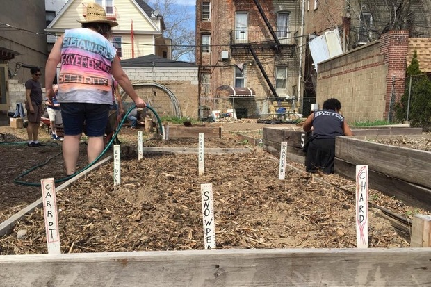 The Maple Street Community Garden is located at 237 Maple St. in Prospect-Lefferts Gardens.