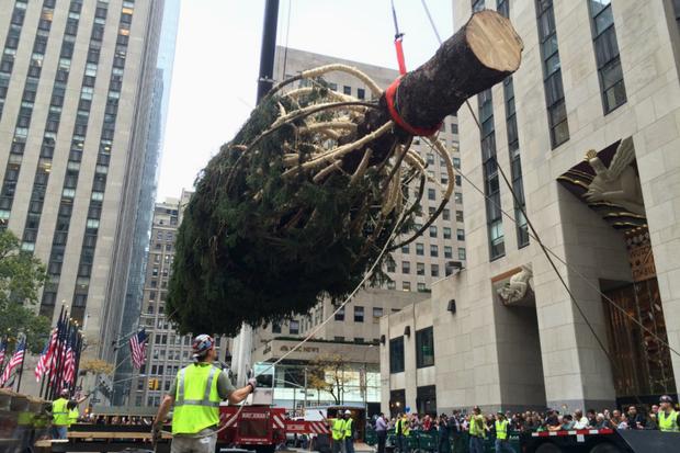 Rockefeller Center Christmas Tree Goes Up