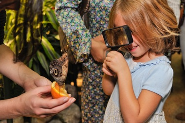 We've combed through the city for camps that will bring out the scientist in your child.