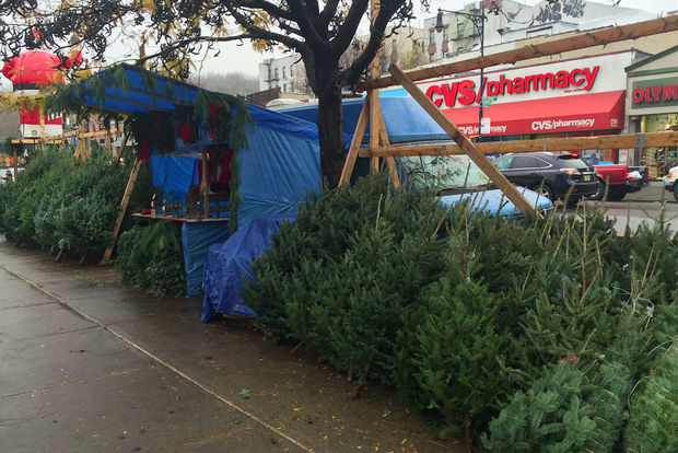A Christmas tree stand at the intersection of Dyckman Street and Post Avenue, where a 6-foot Fraser fir goes for $90.
