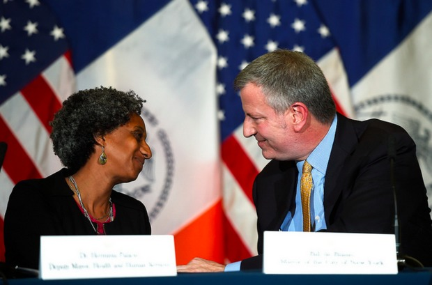 Dr. Herminia Palacio, an expert in crisis management who helped coordinate health services for Hurricane Katrina evacuees in Houston and who worked in San Francisco to manage the HIV/AIDS epidemic was hired as deputy mayor overseeing New York City's response to homelessness, Mayor Bill de Blasio said Tuesday.