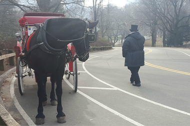 The number of horse-drawn carriages will be reduced and limited to operation in Central Park, according to an agreement reached this week.