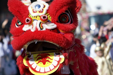 Lion dancers will make their way through the streets of several Lunar New Year celebrations to celebrate the Year of the Rooster.