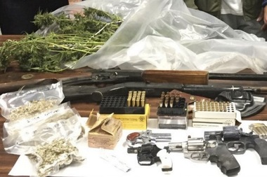 Police confiscated multiple guns, bags of marijuana and marijuana plants at a Prospect-Lefferts Gardens home last week, police and prosecutors said.