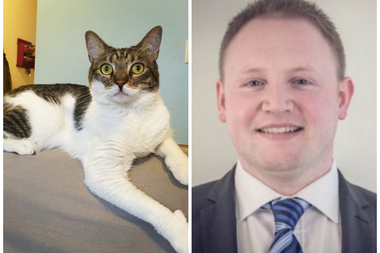 Lucy the cat (left) was tortured over three months by Declan Garrity (right), according to police.