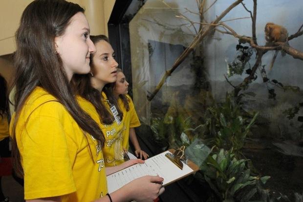 Staten Island Zoo Internship