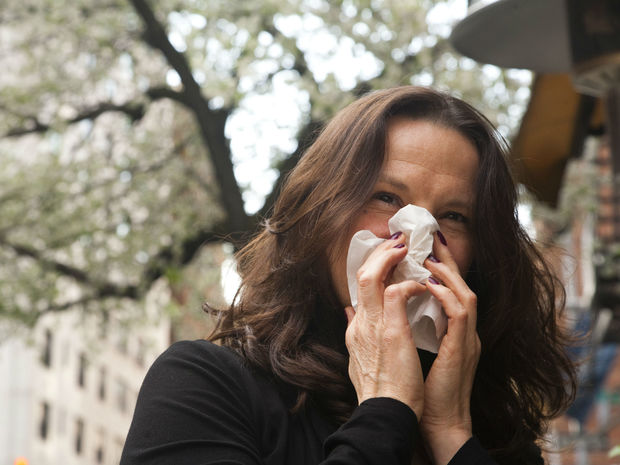 New Yorkers are turning to a range of holistic remedies to treat their allergies.