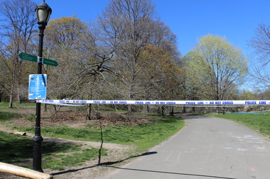Violent crime was up 23 percent in city parks during a nine-month period ending March 31, according to a study by NYC Park Advocates.