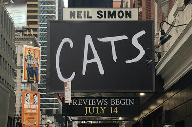 The revival of CATS the is slated to open on Broadway this July.