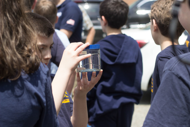 Students collected eels during the annual count of the baby fish at Richmond Creek.