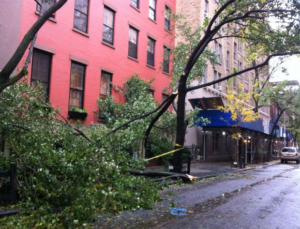 Brooklyn Heights' tree-lined strees were littered with leaves and branches, but had no serious damage.