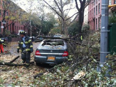 Residents in Cobble Hill and Boerum Hill saw downed trees, flooded basements, and spotty cable service.