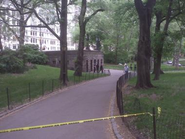 Detectives investigate a dead body found in Central Park Friday.