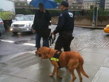 Cops use canine units to hunt escaped prisoner from the First Precinct in Tribeca.