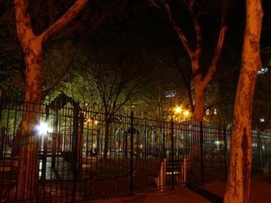 A woman was raped and robbed at Sara Roosevelt Park on the Lower East Side early Thursday morning police said.